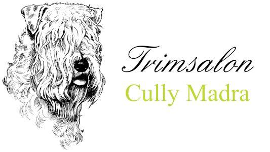 Afb. Cully Madra logo